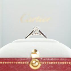 Everything You Need to Know About Engagement Ring Insurance